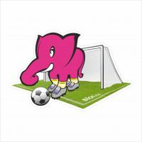 slon fotbalista