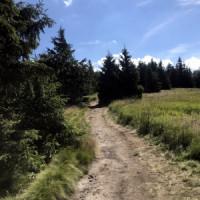 Cesta za keškou