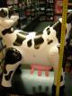 Nafukovací kravička - velká, bučí