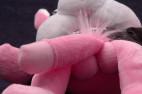 Plyšový zajíc Naughty Bunny