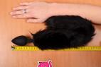Sada PussyCat – měříme délku kolíku s ocáskem