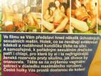DVD Bowling * český pornofilm